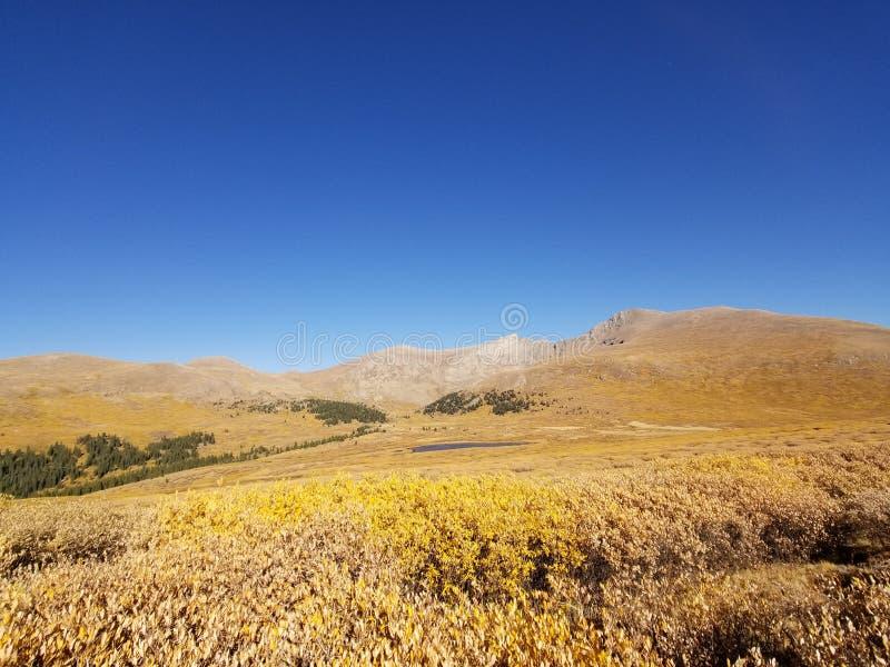 Stagione di caduta di Colorado del cielo blu della montagna immagini stock