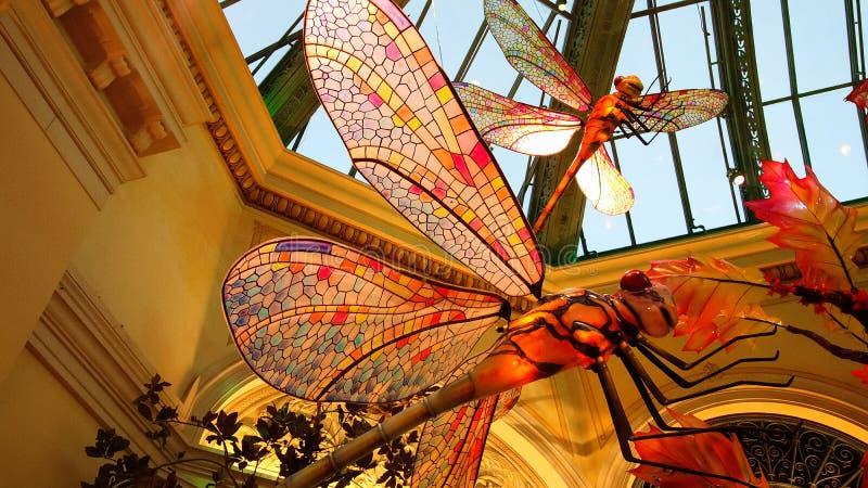 Stagione di caduta nel conservatorio dell'hotel di Bellagio ed in giardini botanici fotografia stock