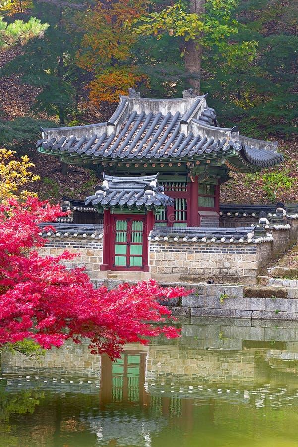 Stagione di caduta nel giardino segreto, Seoul immagine stock