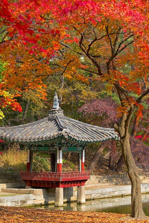 Stagione di caduta nel giardino segreto, Seoul immagini stock