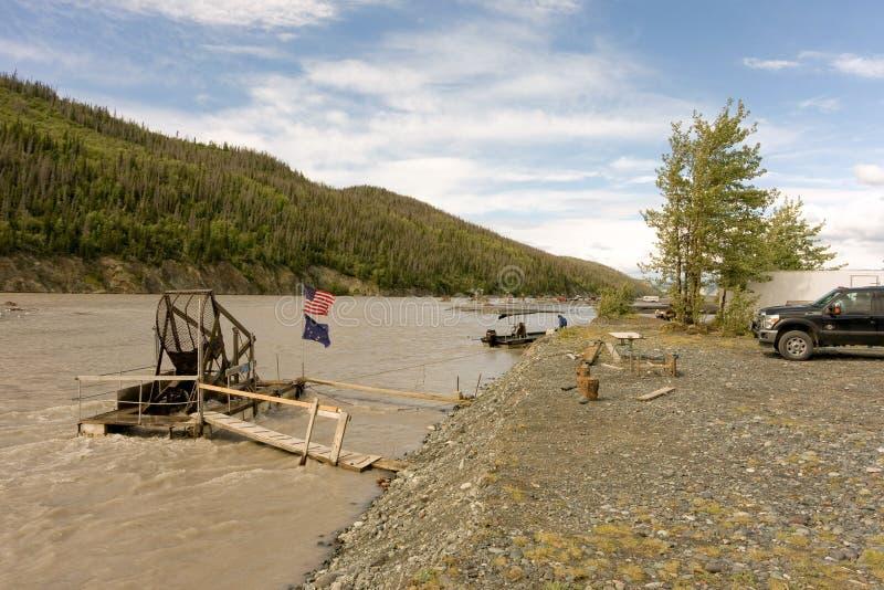 Stagione di color salmone nell'Alaska fotografia stock