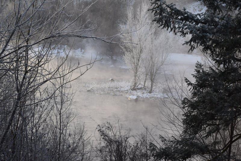 Stagione invernale nel nord-ovest pacifico immagine stock libera da diritti