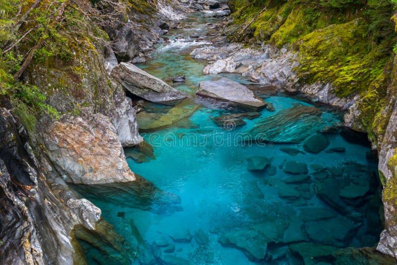 Stagni blu, Nuova Zelanda immagini stock libere da diritti