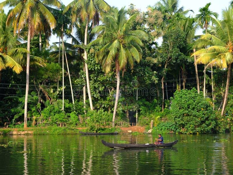 Stagni del Kerala, India fotografie stock