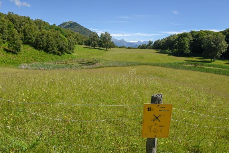Stagno affascinante nel parco pittoresco alla valle di Malcantone sull'interruttore fotografie stock