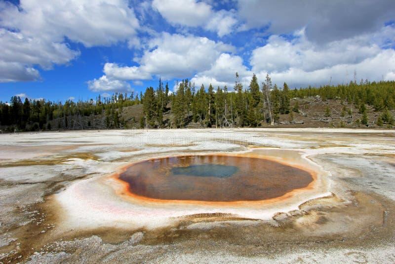 Stagno cromatico della primavera in bacino superiore del geyser nel parco nazionale di Yellowstone, U.S.A. immagini stock