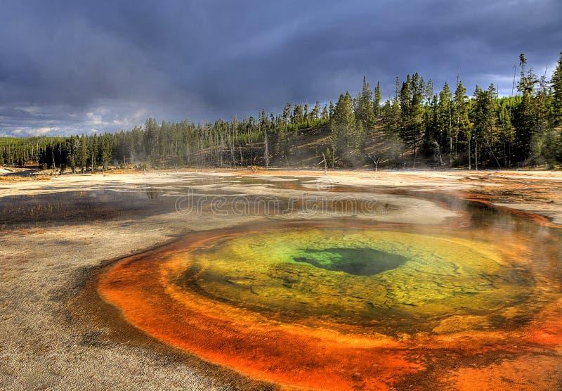 Stagno cromatico Yellowstone fotografia stock libera da diritti