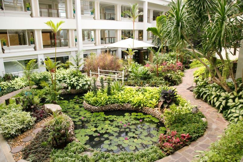 Stagno decorativo in un bello giardino tropicale immagine for Stagno in giardino