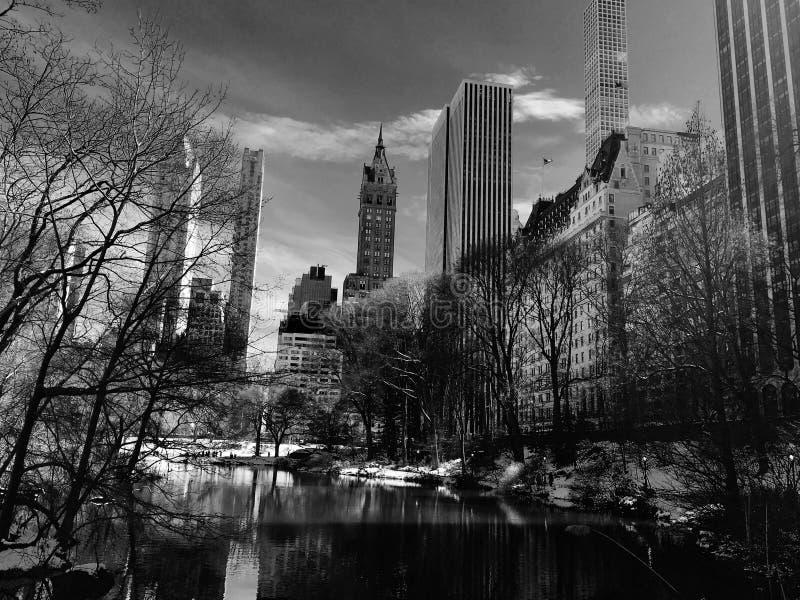 Stagno del cigno in Central Park immagini stock libere da diritti