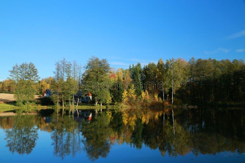 Stagno di autunno fotografia stock libera da diritti