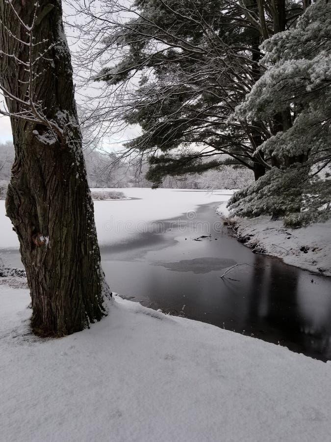 Stagno di inverno immagini stock
