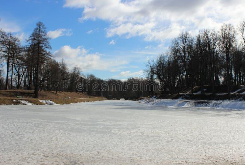 Stagno di Karpin, coperto di ghiaccio di fusione nel parco di Gatcina di primavera fotografia stock