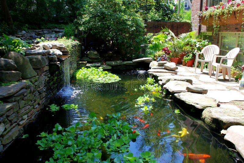 Giardini e fontana giapponesi della casa da t in for Pesci da stagno