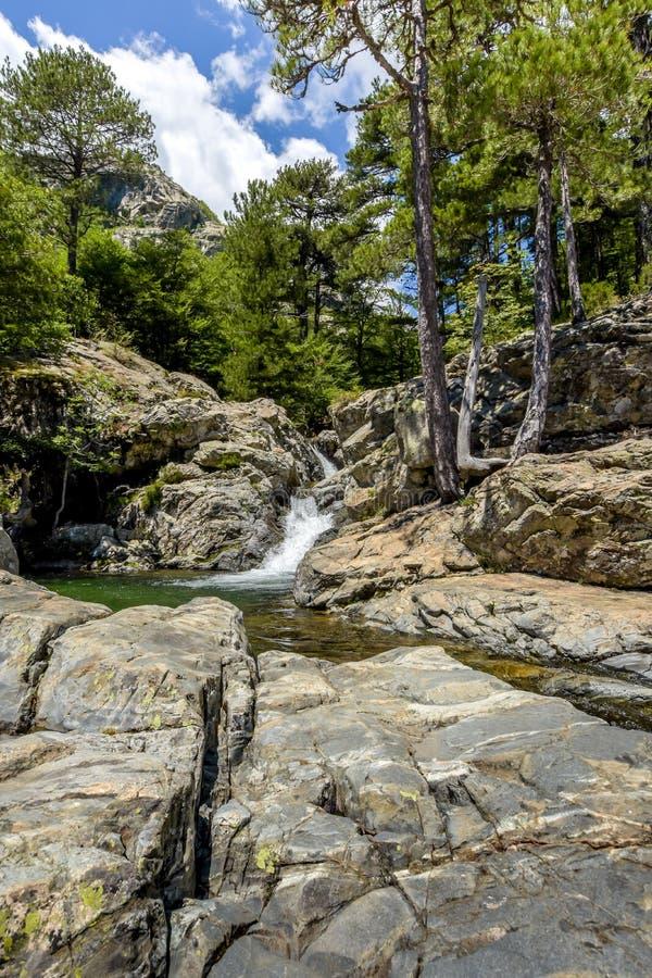 Stagno di pietra con una cascata di vecchia foresta fotografie stock