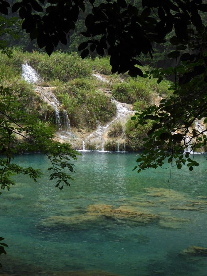 Stagno di Semuc Champey del turchese con le cascate fotografie stock