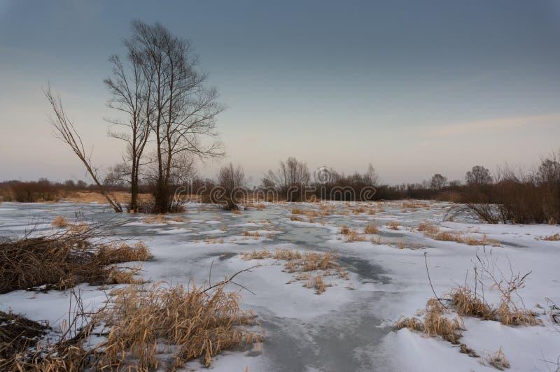 Stagno ghiacciato del fiume fotografia stock libera da diritti