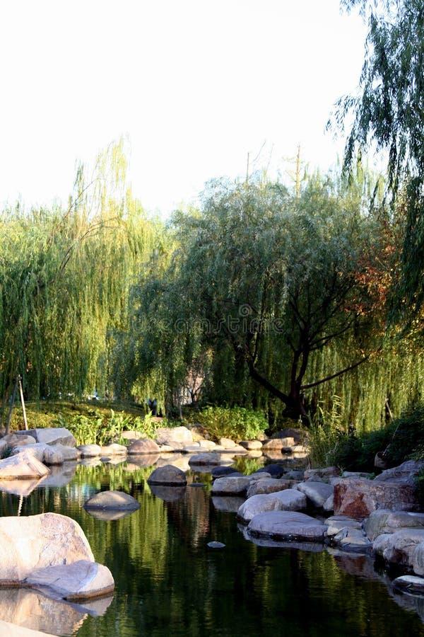 Stagno in giardino cinese immagine stock