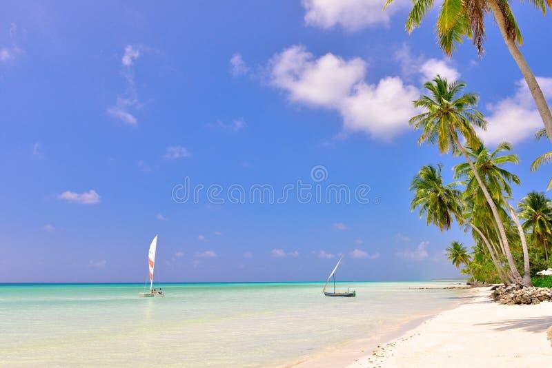 Stagno naturale in Maldive immagini stock libere da diritti