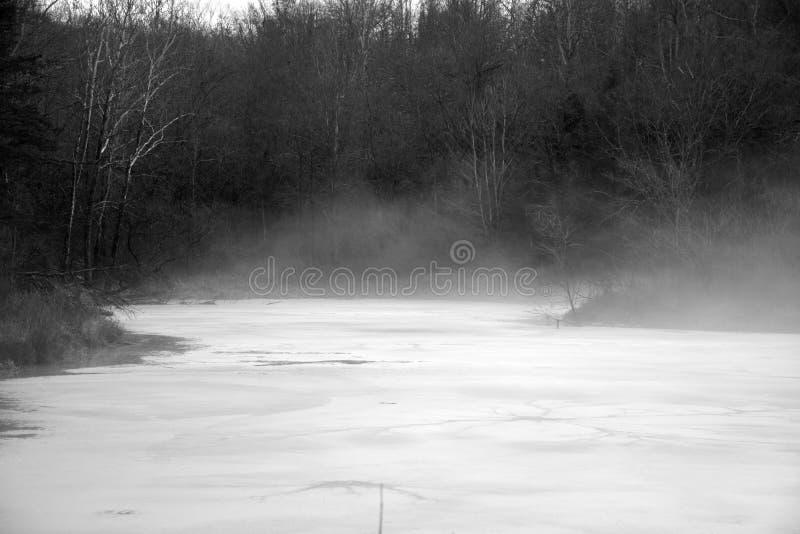 Stagno nebbioso in bianco e nero fotografie stock