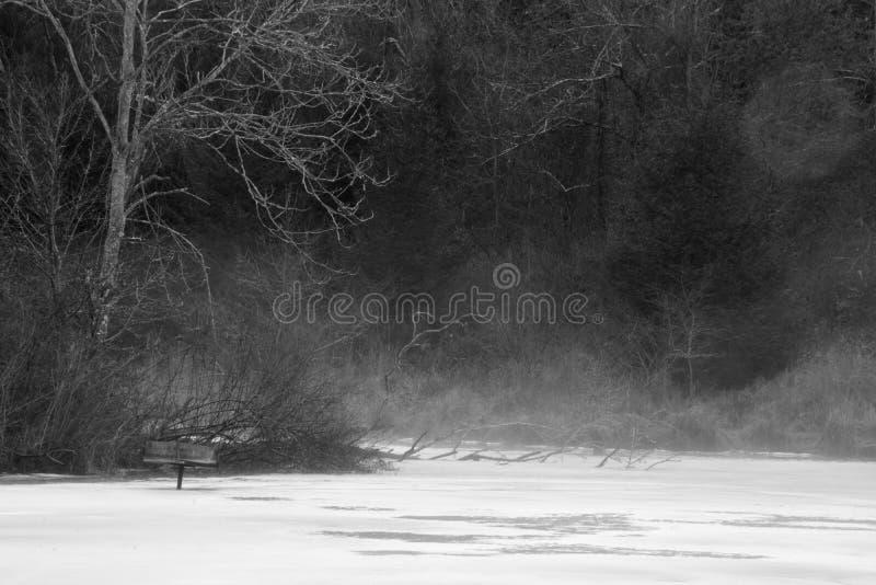 Stagno nebbioso in bianco e nero fotografia stock libera da diritti