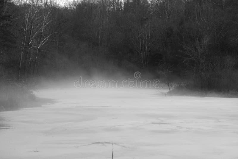 Stagno nebbioso in bianco e nero immagini stock