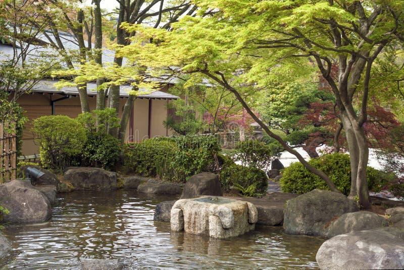 Stagno nel giardino giapponese di zen fotografie stock libere da diritti