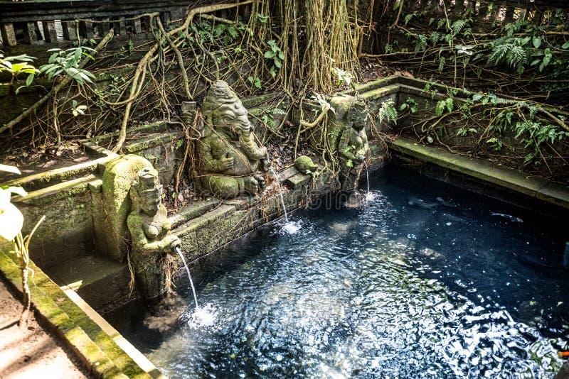 Stagno sacro in tempio alla scimmia Forest Sanctuary in Ubud immagini stock