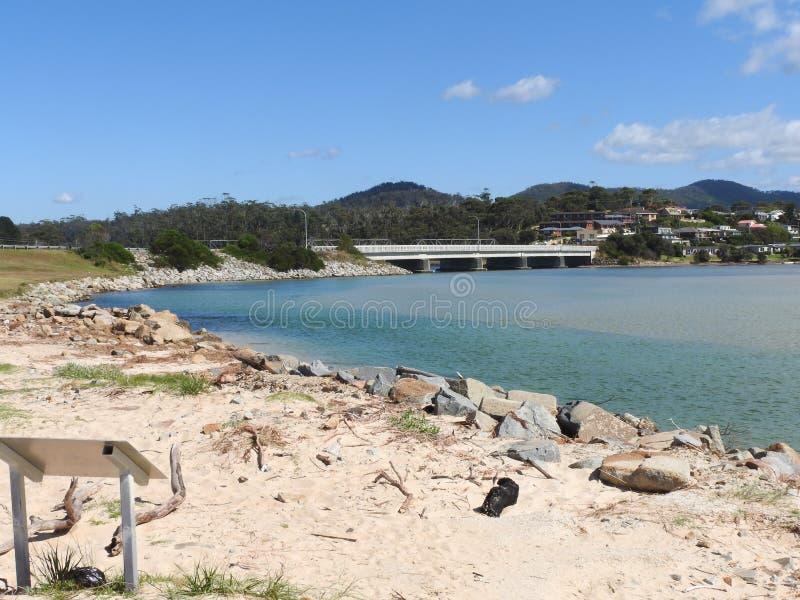Stahl-Strand, Scamander, Tasmanien lizenzfreies stockfoto