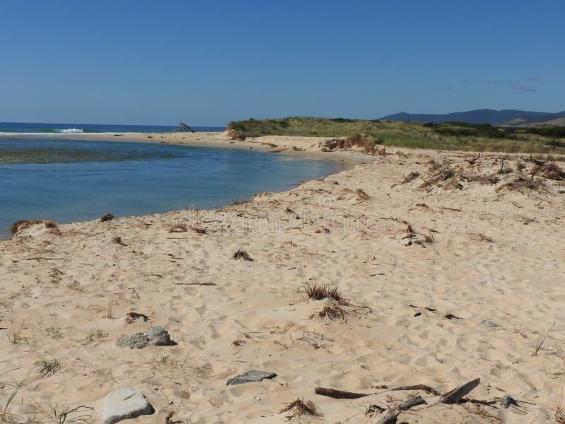 Stahl-Strand, Scamander, Tasmanien lizenzfreie stockfotografie