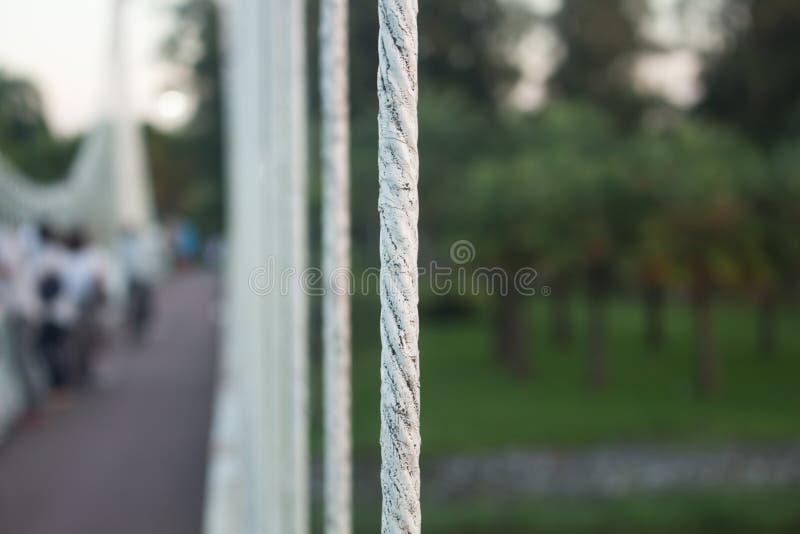 Stahlbrückenkabel auf Naturhintergrund lizenzfreies stockbild