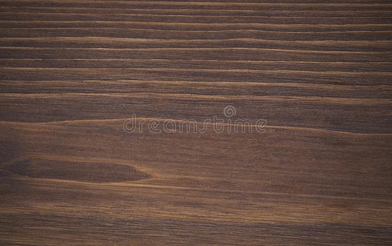 Stained cedar tree. Texture of stained cedar tree close up royalty free stock images