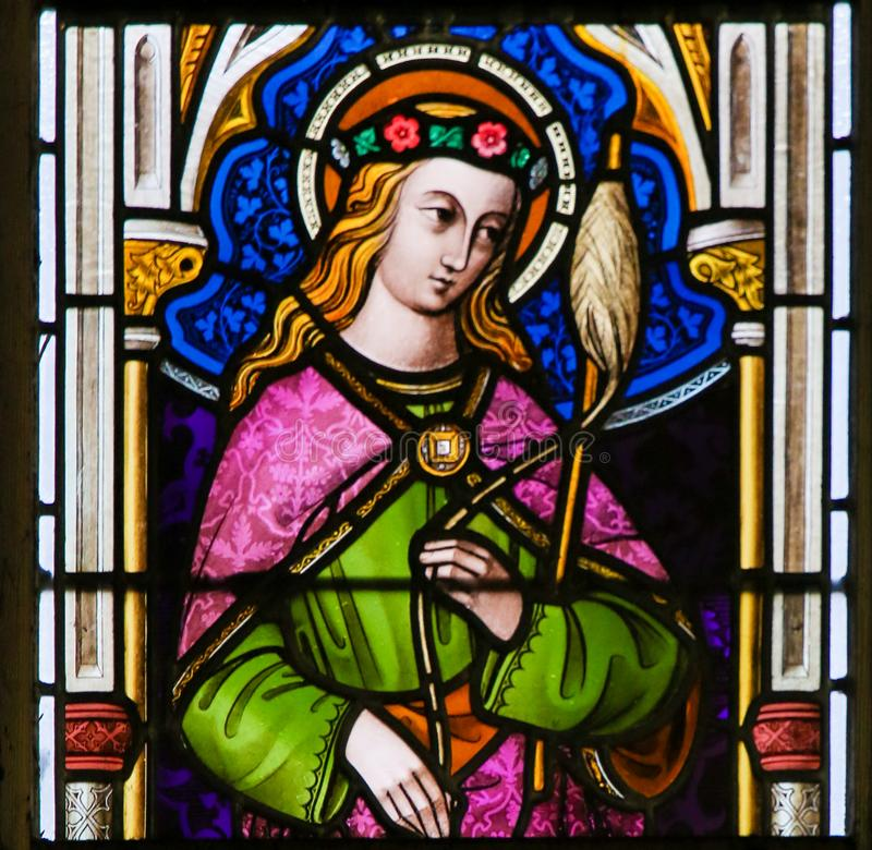Stained Glass - Saint Genevieve. Stained Glass window n the Cathedral of Saint Bavo in Ghent, Flanders, Belgium, depicting Saint Genevieve stock images