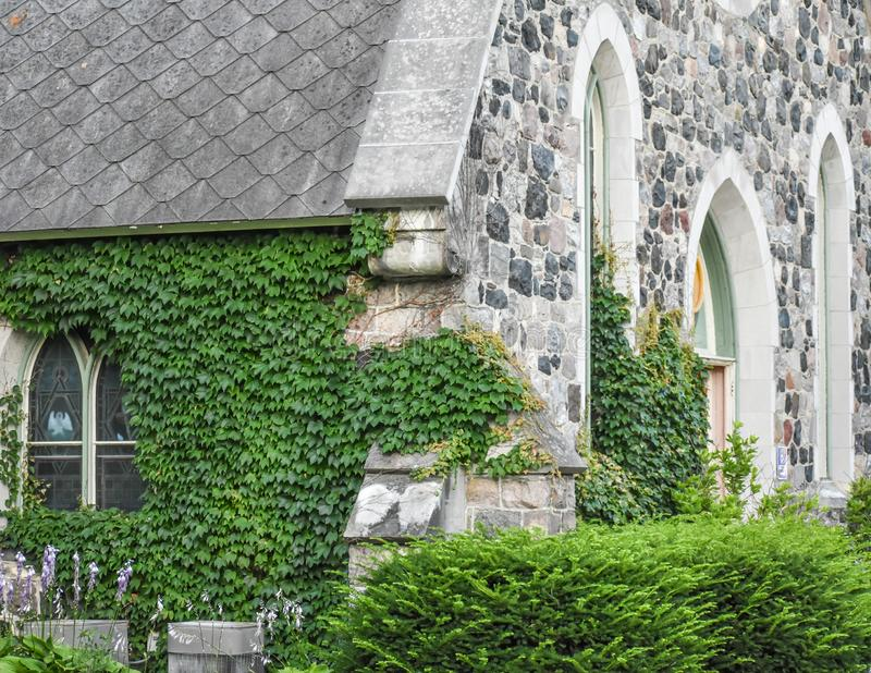 Stained Glass Windows, Ivy on Stone Church Building stock images