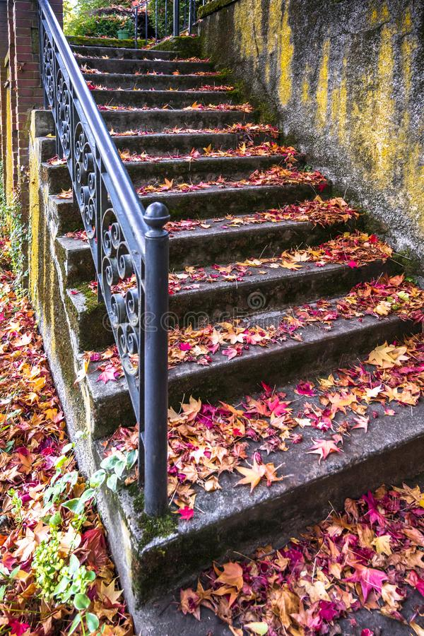 Staircase with carved railing strewn with red autumn leaves of maple royalty free stock photo