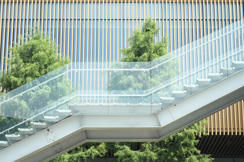Download Staircase And Trees Of A Historic Building Stock Image - Image: 25518275