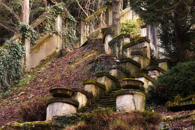 Staircases in the forest stock photography