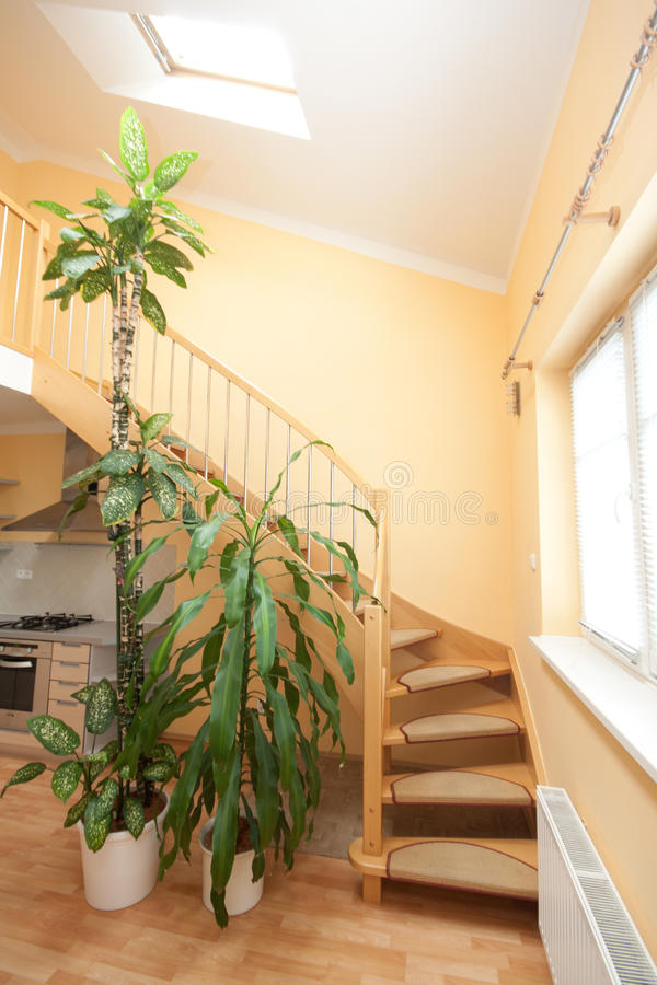 Download Stairs stock image. Image of window, apartment, indoor - 22732009