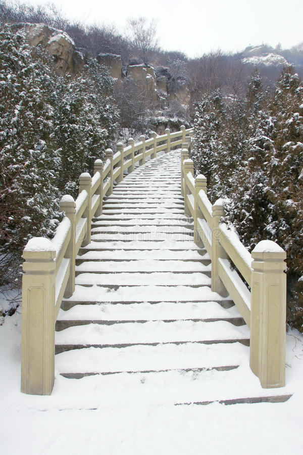Download Stairs stock photo. Image of stair, wintertide, snowy - 23653520