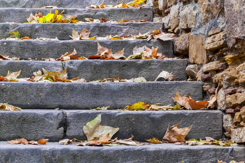 Stairs with Autumn Leaves stock images
