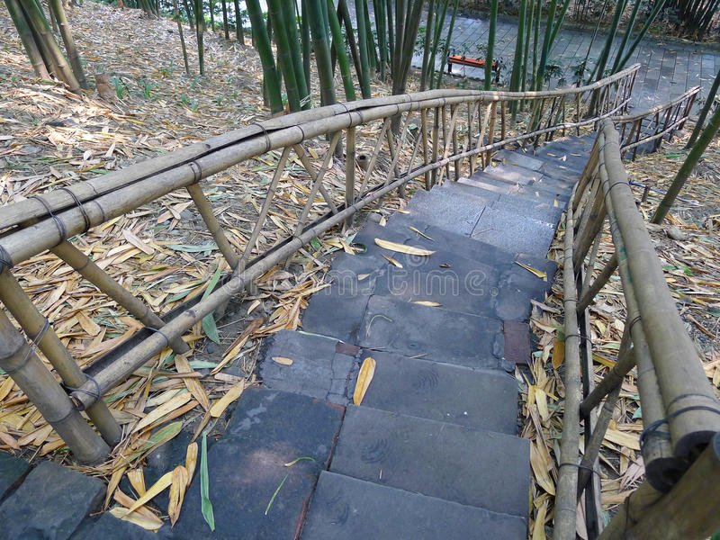Stairs In The Bamboo Forest Stock Photo