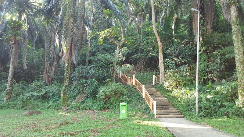 Stairs into a park in Malaysia stock images