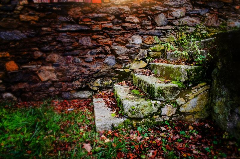Stairs with grass and stone wall in background. royalty free stock photography