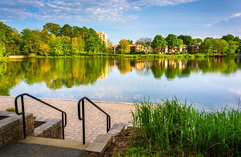 Stairs and grasses along the shore of Wilde Lake in Columbia, Ma royalty free stock photos