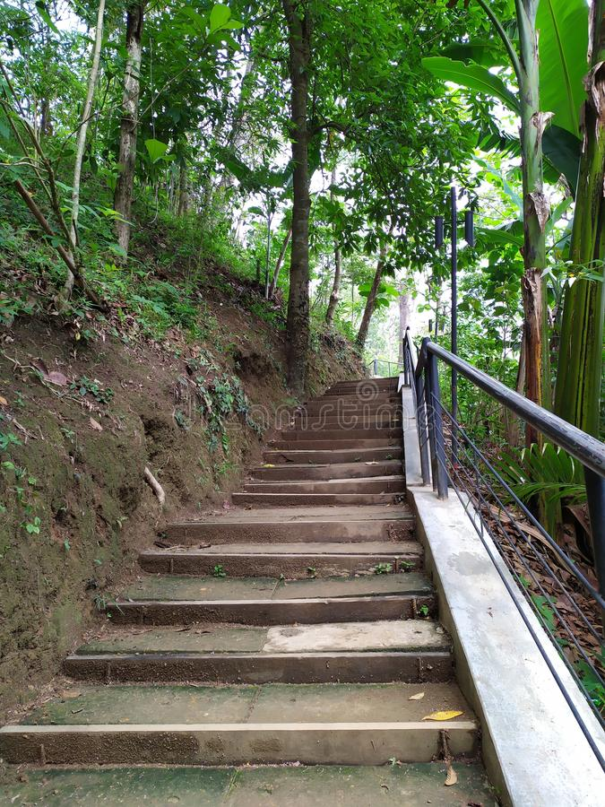 Stairs in the Hill royalty free stock images