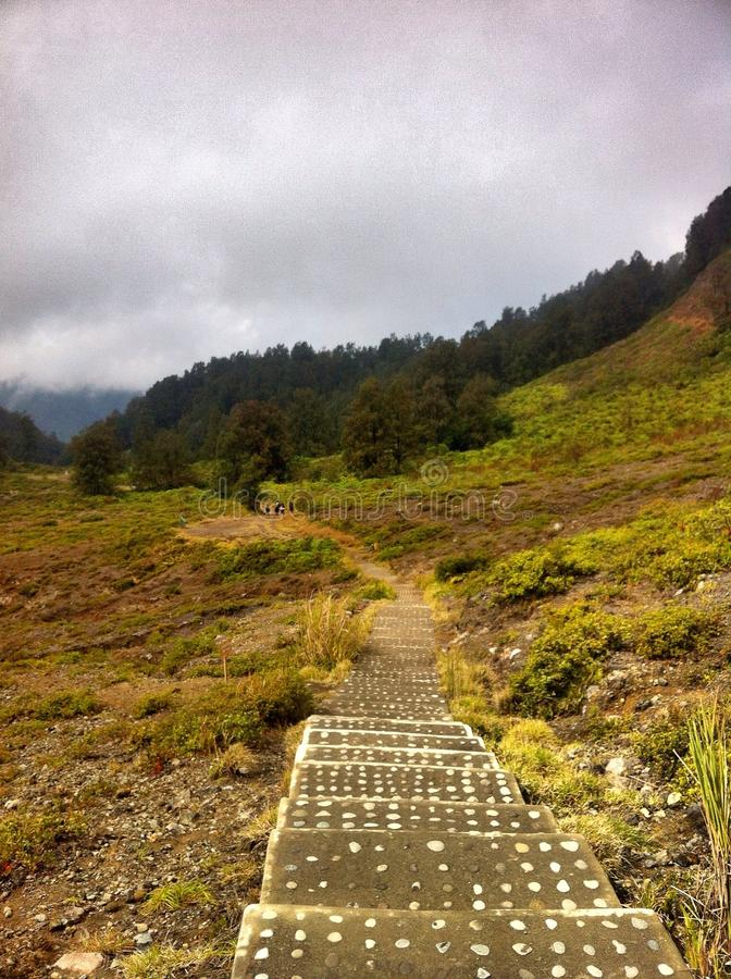 Stairs. Hills fog morning nat park royalty free stock photography