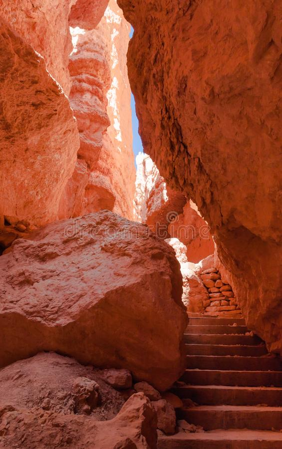 Stairs between the hoodooes in Bryce Canyon. Inside Bryce Canyon, at the end of the Navajos Loop trail, stair steps pass between the hoodos to return to the Rim royalty free stock image