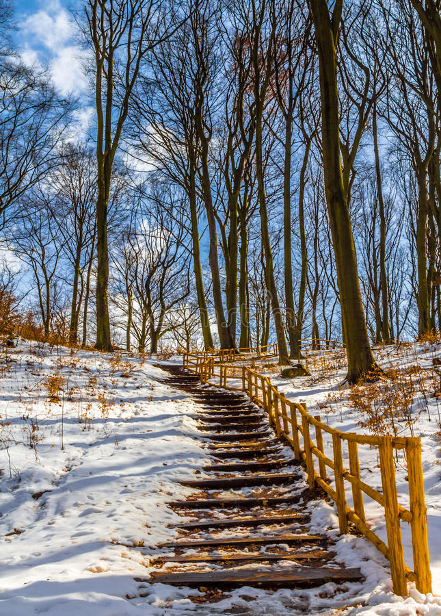 Free Stairs In Winter Stock Photo - 30261140