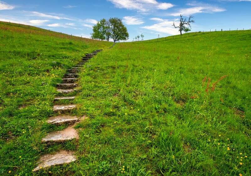 Stairs leading to top of the hill in green grass stock photography