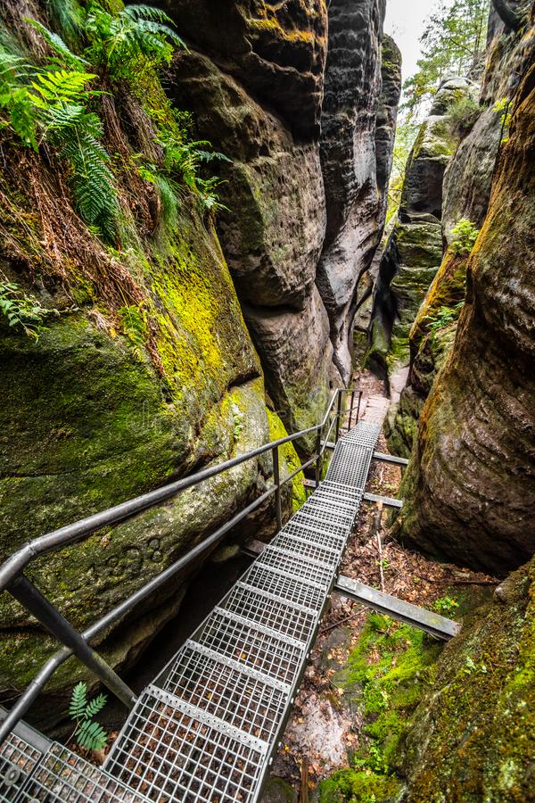 Stairs in narrow canyon in Saxon Switzerland national park, Bad Schandau, Germany, Europe stock photo