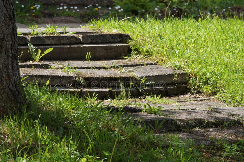 Stairs overgrown with forest, old and collapsed royalty free stock photography